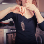 Eliminate Rodents Naturally